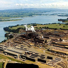 New Zealand Steel (site pictured above) is increasingly directing community support to projects that promote youth, culture and education.
